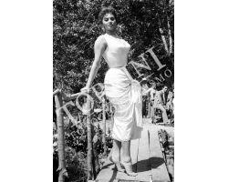 379 Cinema Sofia Loren  Sofia Loren