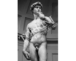 388 David Museo dell\'Accademia
