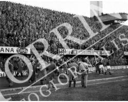 1955 0054 Fiorentina Bologna 1954 55 invasione di campo tifosi