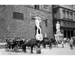 1955 03498 carrozzelle fiaccherai in piazza Signoria David Ercole e Caco
