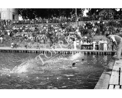 1955 03909 gara di nuoto alla Rari Nantes