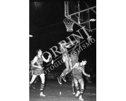 1955 03988 Harlem Globetrotters pallacanesto Basket