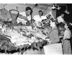 1953 0086 Pescheria del mercato centrale