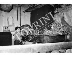1955 0591 Garfagnana bambini