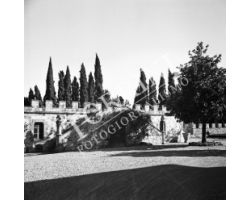 1953 0469 Castelfiorentino