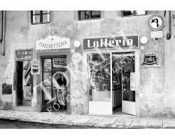 Foto storiche Firenze  via vigna  latteria