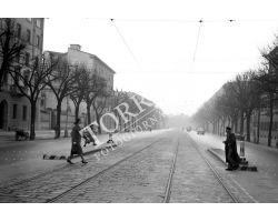 1958 00991 firenze viale Lavagnini