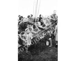 1954 7814 isolotto festa degli alberi
