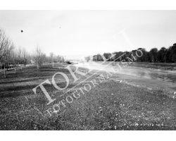 1955 0435 isolotto arno