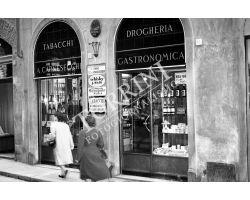 1953 0669 via vigna nuova Tabacchi Drogheria
