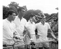 Tennisti  sport