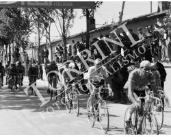 1955 2910  Magni giro d\'Italia tappa Viareggio Perugia ciclismo