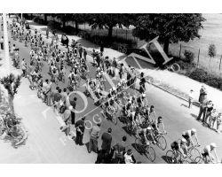 1955 2914 giro d\'Italia tappa Viareggio Perugia ciclismo
