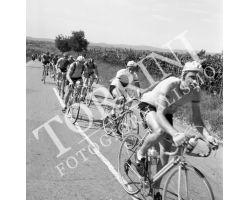 1955 05544 giro della Toscana dilettanti ciclismo