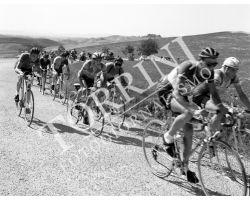 1955 05546 giro della Toscana dilettanti ciclismo