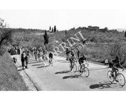 1958 05764 corsa ciclismo   siena campagna del giornale del mattino