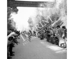 1958 02496 giro della Toscana corsa bicicletta ciclismo