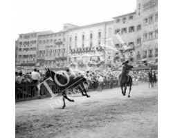 1958 09299 Palio di Siena