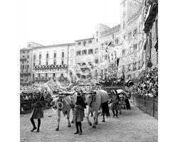 1958 09305 Palio di Siena