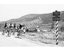 1958 05728 corsa ciclistica  campagna ciclismo