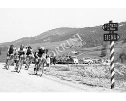 466 corsa ciclistica