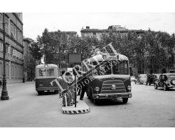 1954 4188 Foto storiche  LUCCA  autobus