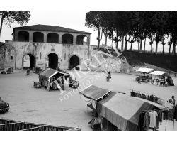 1954 4196 Foto storiche Lucca