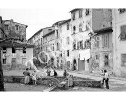 1955 05439 Foto storiche Lucca