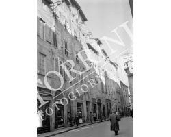 1954 8444 Foto storiche Lucca
