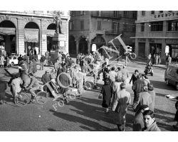 1957 12146 Foto storiche Pisa