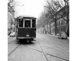 1958 00530 tram ATAF 17 nel Viale dei Mille