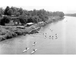 1964 06621 canottieri pescaia di san niccolò arno