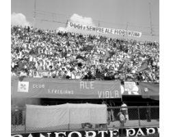 1965 7738 Foto storiche Firenze tifosi fiorentina curva fiesole