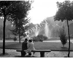 1958   11446  coppia fidanzati in piazza libertà