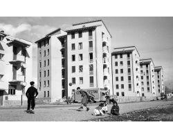 1954 7662  foto storiche Firenze  isolotto