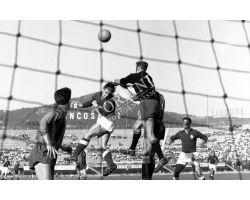 Foto storiche  Fiorentina  Catania 54 55