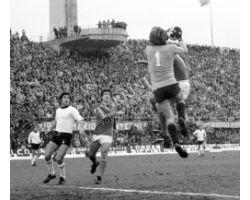 Fiorentina Cesena 76 77 12 Caso
