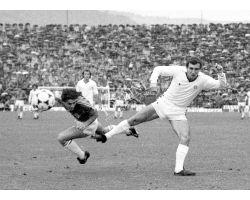Fiorentina Cagliari 80 81