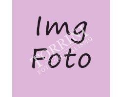 Test img 001