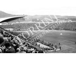 131 Stadio Artemio Franchi con tifosi