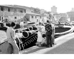 141 Giovani studenti canali Livorno