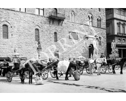 183 Fiaccherai in Piazza Signoria