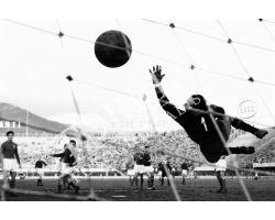 Calcio Fiorentina Triestina portiere