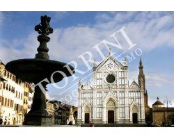 Santa Croce a colori
