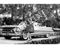 288 Moda donna  e auto