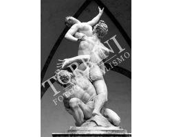 334 Statua Ratto delle Sabine