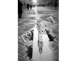 335 Riflesso Palazzo Vecchio