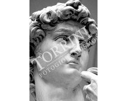 349 David di Michelangelo  Museo dell\'Accademia